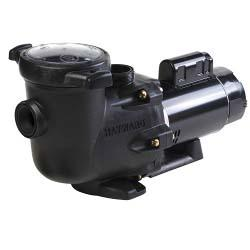 TriStar Energy Efficient Dual Speed 2HP Pool Pump, 230V