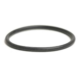 Pool Cleaner In-Line Filter O-Ring