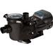 EcoStar Variable Speed Energy Efficient Pool Pump, 230V