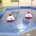 Big Bopper Floating Pool Cooler