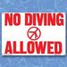 No Diving Allowed- Sign