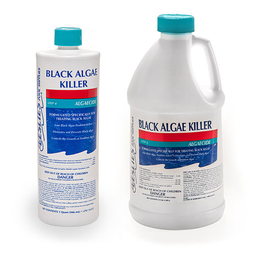 Leslie 39 s black algae killer high powered algaecide for Kill black algae swimming pool