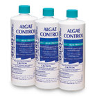 Leslie's 14025 3-PACK of 1 Quart Algae Control